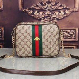Gucci bag (new)